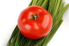 Cebola do tomate e da mola fotografia de stock royalty free