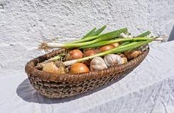 A cebola e o alho são saudáveis Imagem de Stock Royalty Free