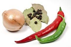 Cebola e pepperoni Fotos de Stock Royalty Free