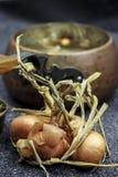 Cebola e vintage velho que cozinham o potenciômetro Fotografia de Stock
