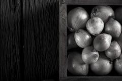 Cebola fresca Fotografia de Stock Royalty Free