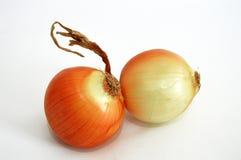 A cebola secada representa apropriado para locais do alimento e propagandas da cebola Fotografia de Stock Royalty Free