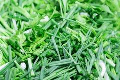 Cebola verde Fotografia de Stock