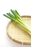 Cebola verde no fundo branco foto de stock