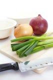 Cebola verde no fundo branco fotos de stock