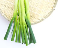 Cebola verde no fundo branco imagens de stock royalty free