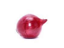 Cebola vermelha Imagens de Stock