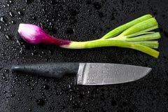 Cebola vermelha e faca frescas Foto de Stock