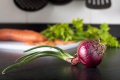 Cebola vermelha em uma cozinha Imagens de Stock