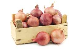Cebolas cor-de-rosa em uma caixa de madeira Fotografia de Stock Royalty Free