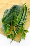 cebolas da Verde-mola, pepinos, salsa foto de stock royalty free
