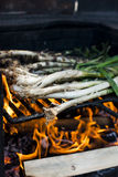 Cebolas do BBQ no fogo Foto de Stock Royalty Free