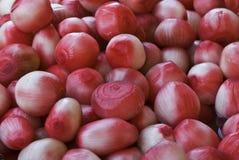 Cebolas doces cor-de-rosa imagem de stock