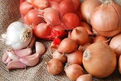 Cebolas e alho Foto de Stock Royalty Free