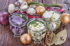 Cebolas e alho Imagens de Stock