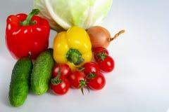 Cebolas e alho búlgaros dos pepinos da couve dos tomates da pimenta dos vegetais em um fundo branco foto de stock royalty free