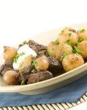 Cebolas e carne de pérola fotos de stock royalty free