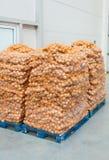 Cebolas em páletes Foto de Stock