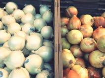 Cebolas frescas fotografia de stock royalty free