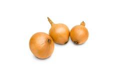 Cebolas frescas Imagens de Stock Royalty Free