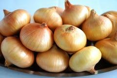 Cebolas frescas Foto de Stock