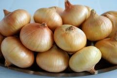 Cebolas frescas Fotos de Stock Royalty Free