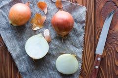 Cebolas frescas cortadas Fotografia de Stock