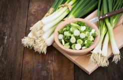 Cebolas frescas da mola Fotos de Stock Royalty Free