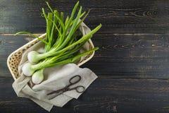 Cebolas frescas da mola e tesouras velhas Foto de Stock Royalty Free