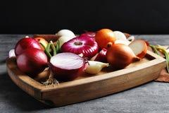 Cebolas frescas diferentes Imagem de Stock Royalty Free