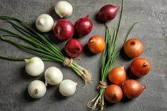 Cebolas frescas diferentes Fotos de Stock