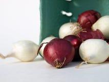 Cebolas misturadas na cesta Foto de Stock