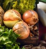 Cebolas na caixa de madeira velha, vista superior Imagens de Stock Royalty Free