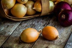 Cebolas orgânicas frescas em uma cesta Imagens de Stock Royalty Free
