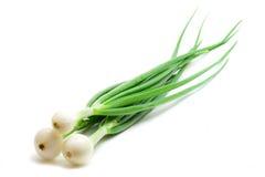 Cebolas verdes Imagens de Stock