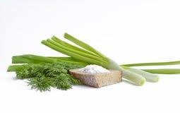 Cebolas verdes, aneto, pão de centeio com sal grosso - vida imóvel fotos de stock