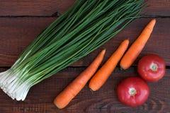 Cebolas verdes, cenouras lavadas, tomates vermelhos fotografia de stock