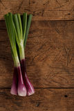 Cebolas verdes da mola na tabela de madeira Imagens de Stock
