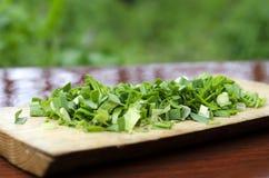 Cebolas verdes desbastadas em uma placa de corte foto de stock