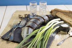Cebolas verdes e arenques conservados Fotos de Stock