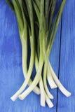 Cebolas verdes no fundo de madeira Imagens de Stock Royalty Free