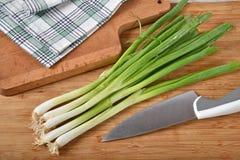 Cebolas verdes orgânicas frescas fotos de stock