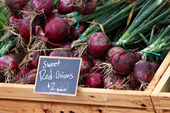 Cebolas vermelhas doces Fotos de Stock Royalty Free