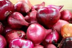 Cebolas vermelhas em um mercado em TB0 0N Europa do Sul, detalhe, close-up imagens de stock royalty free