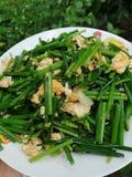 Cebolinha chinês/cebolinha de alho Imagem de Stock