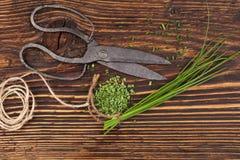 Cebolinha fresco e seco na tabela de madeira Fotografia de Stock