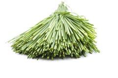 Cebolinha verde fresco fotos de stock