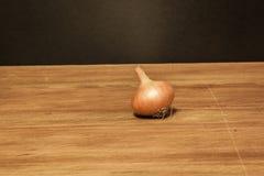 cebolla foto de archivo libre de regalías
