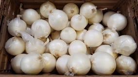 Cebolla blanca en el mercado imagen de archivo libre de regalías