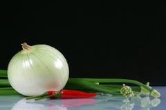 Cebolla, cebollas del resorte y chiles de los pares Fotos de archivo libres de regalías